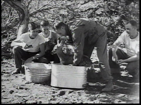 1934 montage men washing and feeding a fawn / united states - new deal stock-videos und b-roll-filmmaterial