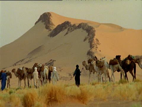 vídeos de stock e filmes b-roll de men wearing robes lead camel train though sahara desert - enfeites para a cabeça