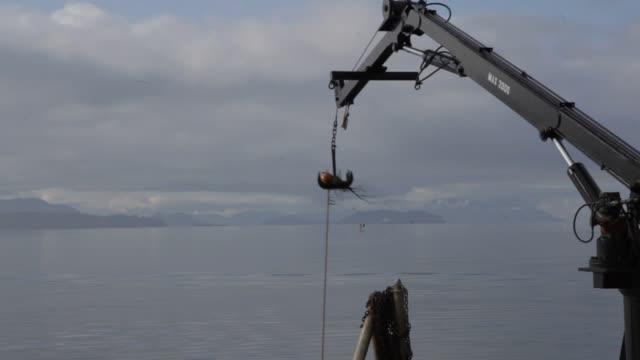 vídeos de stock e filmes b-roll de men with orange suits and protective devices load crates full of oysters onto a boat - acidificação dos oceanos
