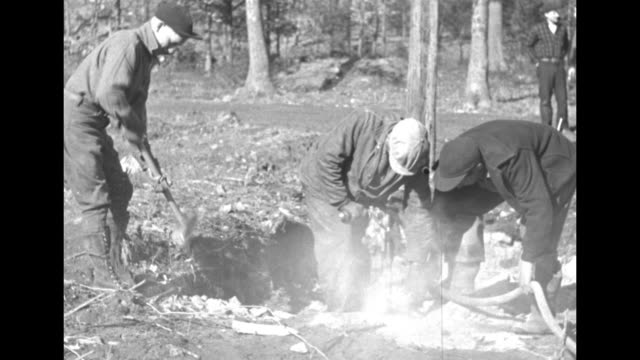 men with the civilian conservation corps logging / digging up trees stumps and jackhammering / chaining logs / blowing up lumber / mrs lauretta... - civilian conservation corps stock-videos und b-roll-filmmaterial