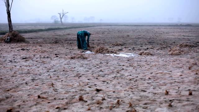 Men & women working in the field during winter season