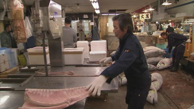 vídeos de stock e filmes b-roll de ws men working at frozen tuna fish, tsukiji fish market, tokyo, japan - peixe congelado