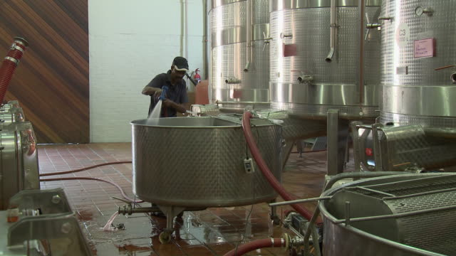 ws pan men working in food processing plant, franschhoek, western cape, south africa - franschhoek stock videos and b-roll footage