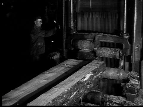 1927 b/w montage cu ha ms pan men working in lumberyard, ontario, canada - tagliaboschi video stock e b–roll