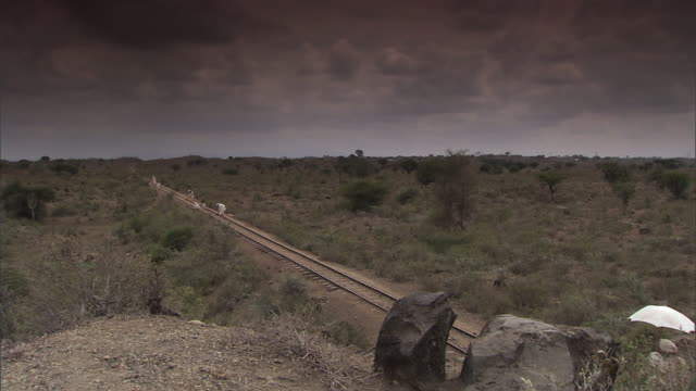 ws men working on african railroad tracks / tanzania - railway track stock videos & royalty-free footage