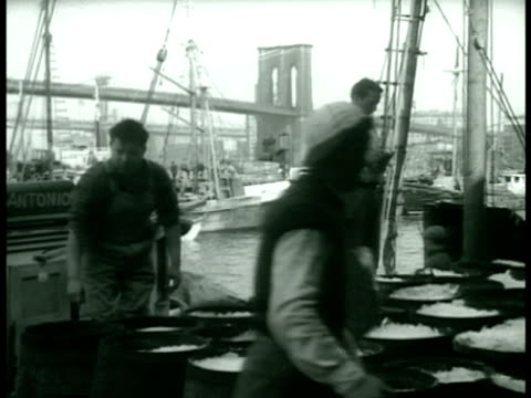 men working on docks w/ brooklyn bridge bg icing barrels standing by crates unstacking crates of chickens file box of convicted racketeers index... - dessert topping stock videos & royalty-free footage