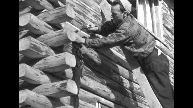 LS men working on ext of log cabin / MS worker on ladder hammering on ext / CU man w long white beard checking pelt nodding / Good shot of men...