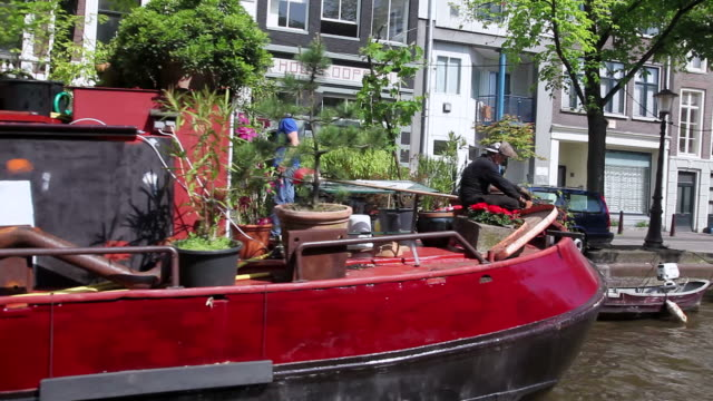 vídeos de stock e filmes b-roll de ws pov men working on plants in houseboat / amsterdam, the netherlands, holland - barco casa