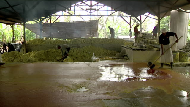 MS Men working on sulfur mining / Ijen, Java, Indonesia