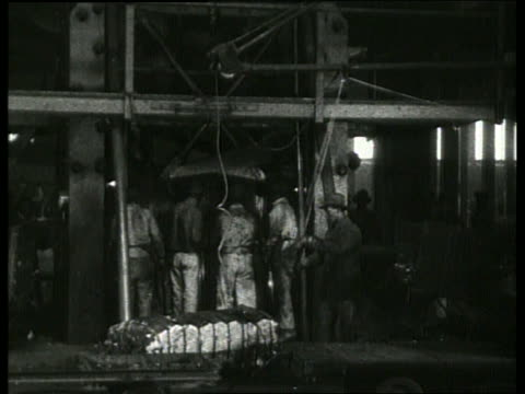 b/w men working with compressed cotton bales in warehouse / 1910 new orleans / no sound - 1910 stock-videos und b-roll-filmmaterial