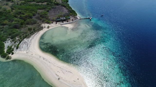menjangan island, west bali national park. - bali stock videos & royalty-free footage