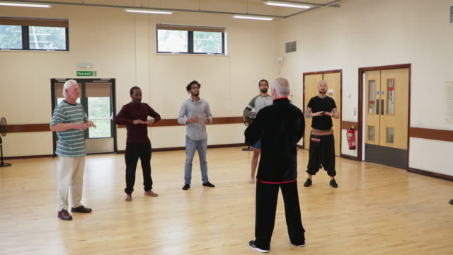 men's tai chi therapy class - self defence stock videos & royalty-free footage