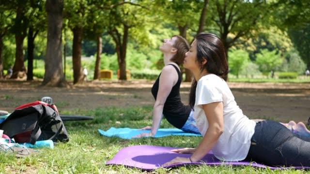 精神健康 - 公園でヨガ友達 - ヨガ点の映像素材/bロール