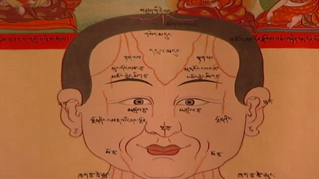 men-tsee-khang, dharamsala. extreme a head on a medical chart hanging on a wall at a medical museum in dharamsala. - anatomy stock videos & royalty-free footage