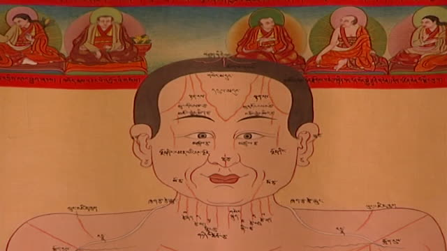 men-tsee-khang, dharamsala. zoom-in on a head on a medical chart hanging on a wall at a medical museum in dharamsala. - anatomy stock videos & royalty-free footage