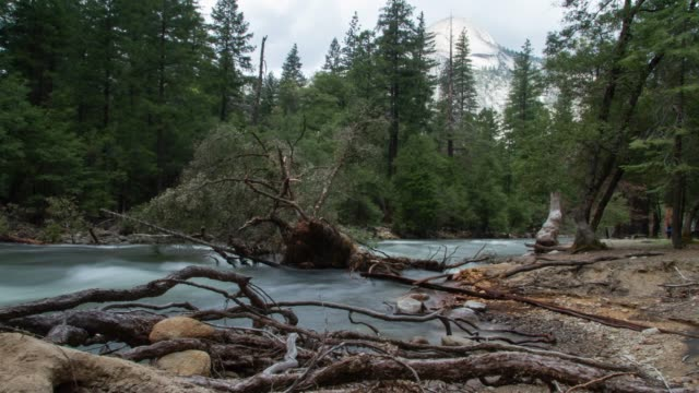 merced river in yosemite national park - river merced stock videos & royalty-free footage