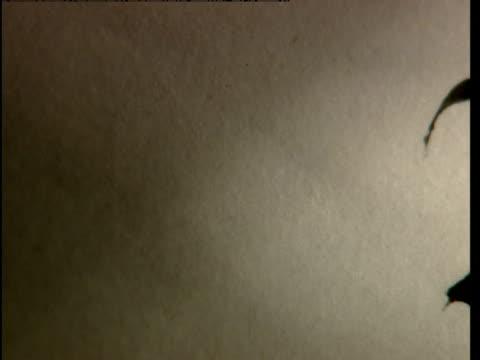 merlin is written with a fountain pen. - fountain pen stock videos & royalty-free footage