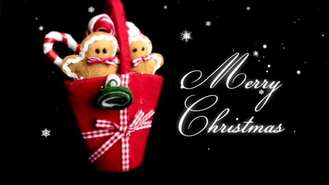 Funny merry christmas greetings videos and b roll footage getty images merry christmas m4hsunfo