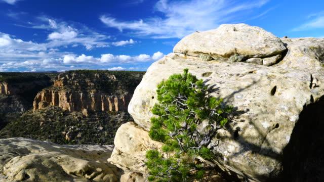 mesa verde national park, unesco world heritage, colorado, usa, north america, america - mesa verde nationalpark stock-videos und b-roll-filmmaterial