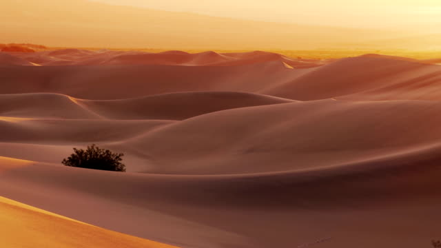 mesquite flat dunes. sunrise. time lapse - sand dune stock videos and b-roll footage
