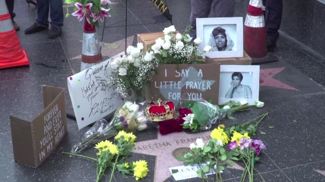 messages and flowers are accumulating at aretha franklin's star on hollywood boulevard following the news that the queen of soul music died at age 76 - soul music stock videos & royalty-free footage
