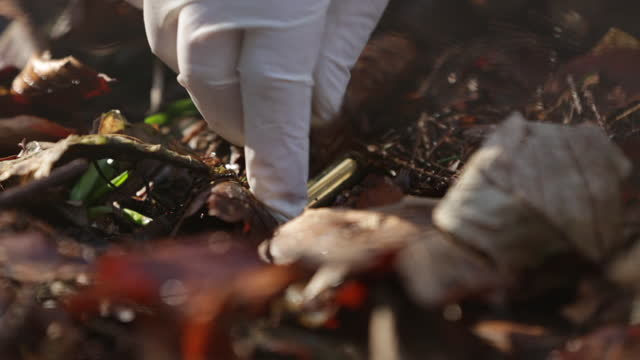 vídeos y material grabado en eventos de stock de a metal detector discovers a bullet on the floor. a hand with gloves collects it and put in a plastic bag. - oficio agrícola
