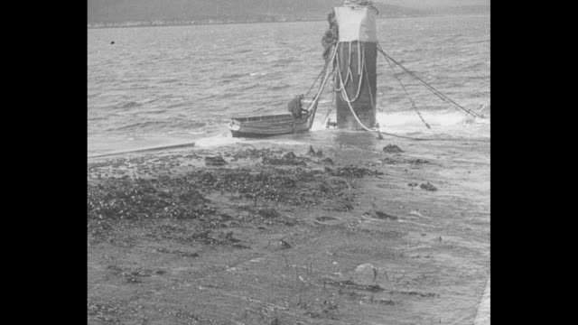 metal protrusion on keel side of mostly submerged scuttled world war i german battlecruiser sms moltke / man climbs from rowboat tied to sms moltke... - seegras material stock-videos und b-roll-filmmaterial