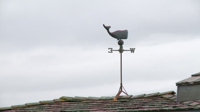 """metal whale weather vane on top of tiled roof, grey day in homer spit, homer, kenai peninsula, alaska."" - homer alaska stock videos & royalty-free footage"