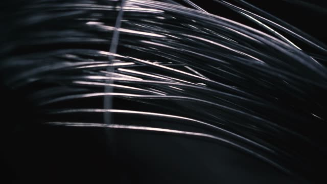metallic wire tangled on black background - spiral stock videos and b-roll footage
