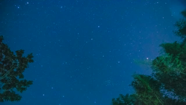 meteor shower - meteor shower stock videos and b-roll footage