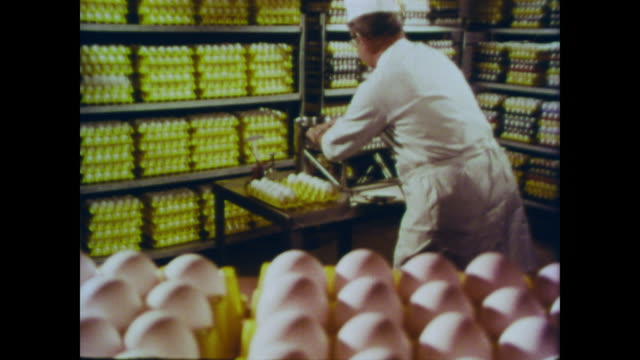 1966 methods used to grade eggs grade aa or grade b including candelling, shell breaking and sight inspection - egg yolk stock videos and b-roll footage