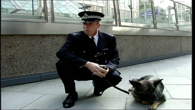 metropolitan police officer and his dog receive commissioner's commendation for bravery; constable steve roots interview as crouches down next to dog... - no doubt band stock videos & royalty-free footage