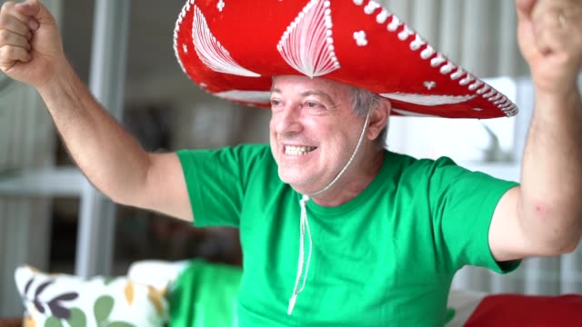 mexican fan celebrating at home - fan enthusiast stock videos and b-roll footage
