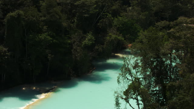 mexico : agua azul - azul stock-videos und b-roll-filmmaterial