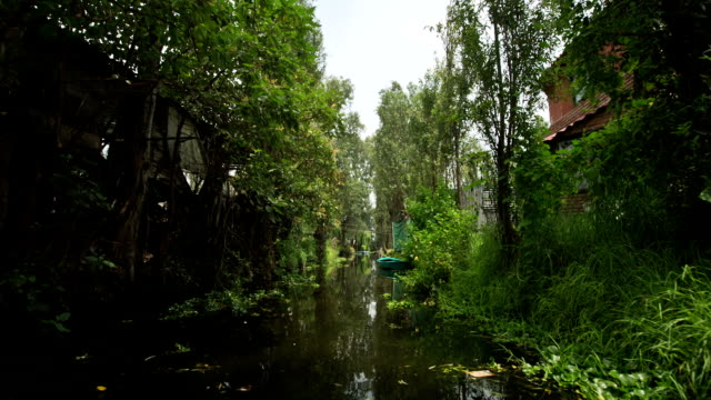 Mexico City Canals