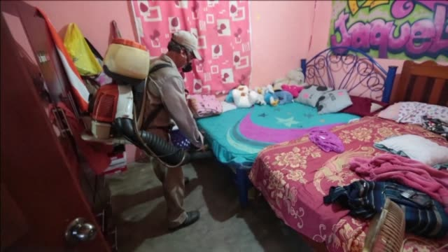 mexico has started to fumigate preventively against the mosquitos that spread the zika chikungunya and dengue viruses in touristic southern acapulco - virus zika video stock e b–roll