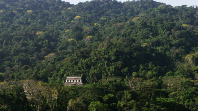 mexico: palenque - mayan stock videos & royalty-free footage