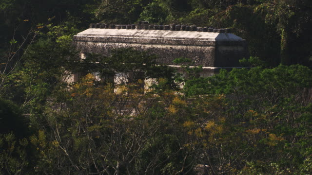 mexico : palenque - palenque stock-videos und b-roll-filmmaterial
