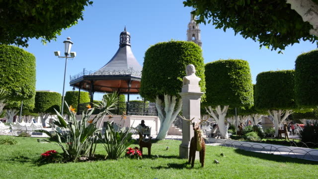 mexico san julian plaza with deer and bandstand - bandstand stock videos and b-roll footage
