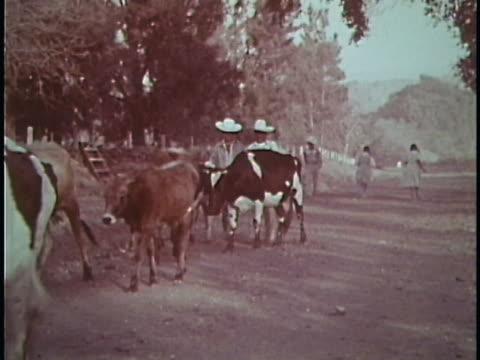 vídeos y material grabado en eventos de stock de 1961 mexico - non urban scene