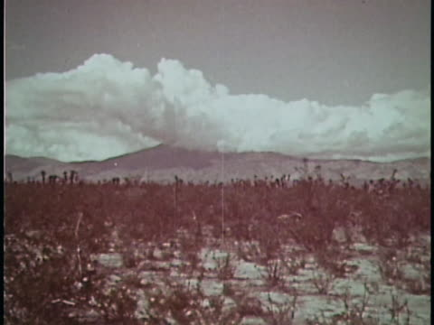 vidéos et rushes de 1961 mexico - mexique