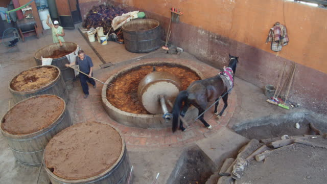 mezcal homemade production family business. traditional horse millstone grinding agave core. one man using a pitchfork. one man taking care of fermenting wooden vats - millstone stock videos & royalty-free footage
