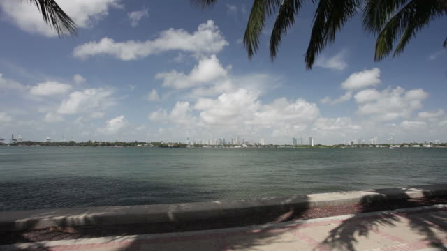 stockvideo's en b-roll-footage met miami and palm trees - biscayne bay
