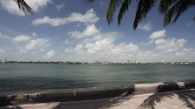 vidéos et rushes de miami et de palmiers - biscayne bay