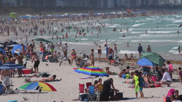 miami beach, united states: crowded tropical beach on a weekend day during the summer months. - マイアミビーチ点の映像素材/bロール