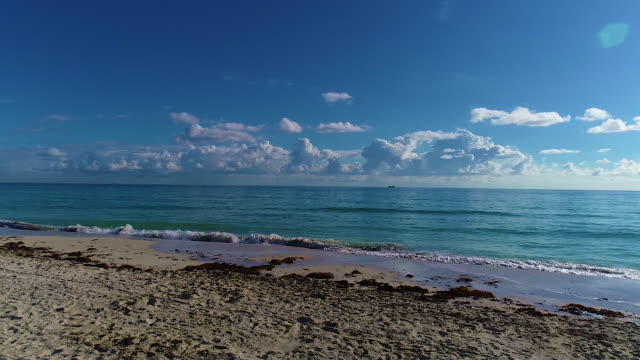 miami beach - gulf coast states stock-videos und b-roll-filmmaterial
