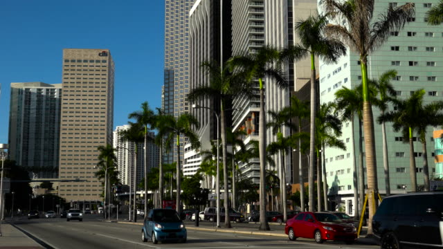 miami. downtown miami - downtown stock videos & royalty-free footage