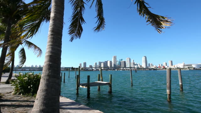 miami, florida - biscayne bay stock videos & royalty-free footage
