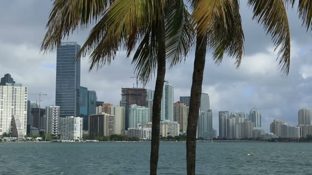 miami florida - miami dade county stock videos and b-roll footage