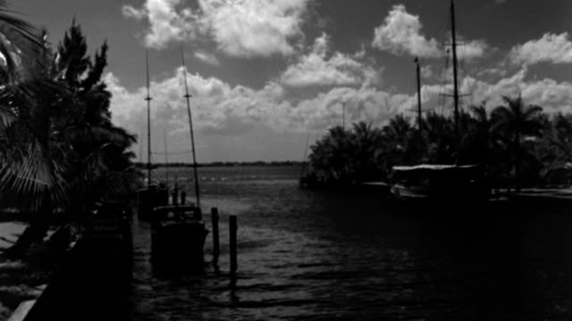 nx - miami florida - yacht - biscayne bay: looking down on a canal toward the bay - yachts moored on both sides - b&w. - biscayne bay stock-videos und b-roll-filmmaterial